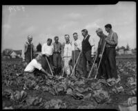 Men pose for a photo after working in a community garden, circa February 1934.