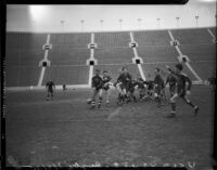 UCLA and USC rugby players compete in a game at the Coliseum, Los Angeles, 1935