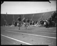 USC and Berkeley track members compete in a 100 yard race at Memorial Coliseum, Los Angeles, 1935
