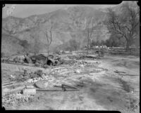 Aftermath of forest fire, Altadena, California, October 1935