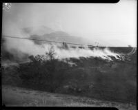 Forest fire, Altadena, California, October 1935
