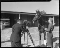 Singing Wood and trainer filmed by unknown man, circa 1936