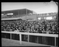 Crowds viewing race at Santa Anita, Arcadia, circa 1935