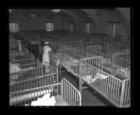 Pacific Colony nursery cribs jammed together due to overcrowding, 1950.