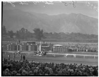 Horses race on Derby Day at Santa Anita, February 22, 1937.
