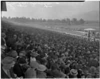 The crowd at Derby Day at the Santa Anita racetrack, February 22, 1937.
