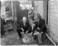 Accused murderer Fred Stettler showing Capt. Bert Wallis and Det. Lt. Miles Ledbetter money Stettler had stolen and hidden in a potato sack at his home