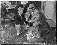 Accused murderer Fred Stettler showing Capt. Bert Wallis and Det. Lt. Miles Ledbetter money Stettler had stolen and hidden in a potato sack at his home