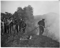Spectators watch as a fireman hoses down flames from a forest fire in the Glendale Woodlands, December 20, 1937