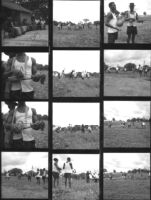 12 images showing men harvesting a field with machetes, and a man playing a gonje or goge, a one-string fiddle
