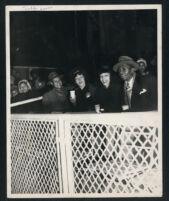 Spectators at a baseball game at Wrigley Field, Los Angeles, 1940s