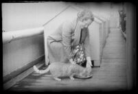 Woman feeding a cat on the S.S. Mariposa, Los Angeles