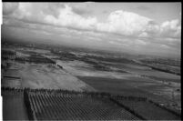 Aerial view of rushing flood waters traveling through crops in North Hollywood, Los Angeles, 1938