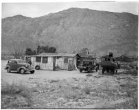 Deserted cabin where Betty Hardaker hid after murdering her daughter, Palm Springs, 1940