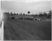 Horses racing on a rainy Derby Day at Santa Anita Park, Arcadia, February 22, 1940