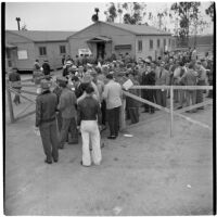 Veterans line up for a surplus truck and trailer sale put on by the War Assets Administration, Port Hueneme, May 1946