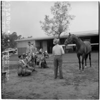 Race horse War Knight and his trainer C.T. Leavitt pose for photographers, Arcadia, March 9, 1946