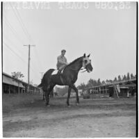 Jockey riding race horse Coast Invasion near the stables at Santa Anita Park, Arcadia, March 9, 1946