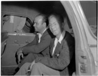Frank Bincia in the back of a police car after being arrested due to an altercation with John Sullivan, Los Angeles, August 6, 1946