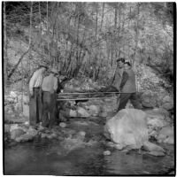 Rescuers carrying David Swaim on a stretcher after he suffered a minor heart attack during a hike in Arroyo Seco Canyon, Los Angeles, December 9, 1946