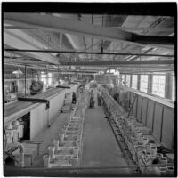 Employees working at the Universal Vitreous China Factory, Mentone, circa 1948
