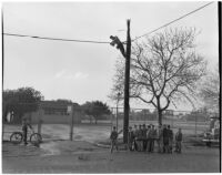 Man fixes lightning damage to a utility pole while young boys hold a piece of the pole that broke off during the storm, Anaheim, 1941