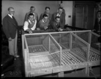Attorney Andrew J. Copp, Chief C.E. Webb, Captain J.E. Greer, and Detective J.E. Edwards test a gambling dice game seized from the Del Mar Club, Santa Monica, 1934