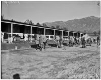Jockeys walk with horses at Whitney Stables in Santa Anita Park, Arcadia, 1930s