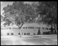 Crowd watches golfers compete at the 12th annual Los Angeles Open golf tournament, Los Angeles, 1937