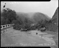 Fallen tree on Pacific Coast Highway after a landslide in Topanga Canyon, Los Angeles, 1930s