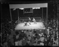 Heavyweight boxers Bob Pastor and Bob Nestell facing off at Wrigley Field, Los Angeles, 1937