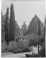 W. R. Dunsmore residence, view from west end of rose garden towards terrace, Los Angeles, 1932