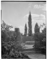 W. R. Dunsmore residence, view towards terrace, Los Angeles, 1930