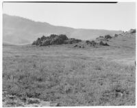 Grassy hillside with lupines in foreground, craggy rocks in midground, San Joaquin Valley, 1935