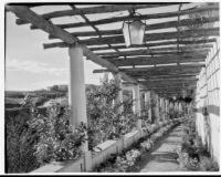 James R. Martin residence, pergola, Los Angeles, 1931