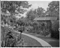 A. G. Mersy residence, back yard with rose standards, lawn and lathhouse, Pasadena, 1933