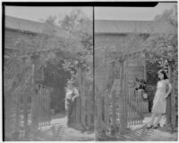Unidentified residence at 3936 East First Street, Garden fence with gate beneath trellis with vine, Los Angeles, 1931