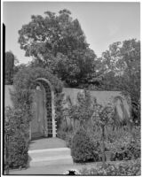 Dr. and Mrs. P. G. White residence, view of garden gate framed by arbor, Los Angeles, 1933-1938
