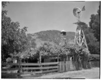 Windmill, fenced area, small building with arbor, Channel Islands, 1934
