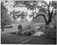 Edward Charles Harwood residence, patio and lawn, San Marino, 1928 or 1932