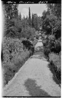 La Mortola botanical garden, main garden axis with view of lavender plants, Ventimiglia, Italy, 1929