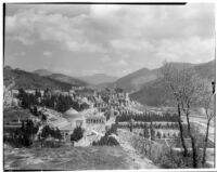 Panoramic view of a cemetery in Italy, 1929