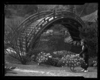 Huntington Botanical Gardens, lily pond and bridge in the Japanese garden, San Marino, circa 1931-1938