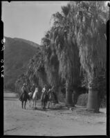 Cowboys riding horses on dirt road next to affluent residential property, Palm Springs