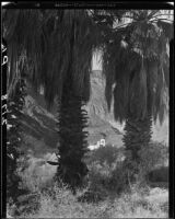 El Kantara, house with onion dome, horseshoe arches, and tiled roof, viewed through palm trees, Palm Springs, [1925-1940?]