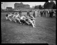 "Young men in tug of war at homecoming ""brawl,"" University of Southern California, Los Angeles, [1928?]"