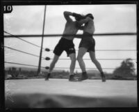 Boxers Young Stribling and Eddie Huffman fighting at Ascot Arena, Los Angeles, 1925