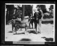 Crown Prince Gustav Adolf of Sweden in a national park standing next to a deer, Arizona, California or Colorado, 1926