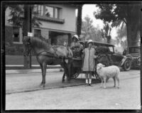 Little girl with lamb standing in front of a horse and cart before the Tournament of Roses Parade, Pasadena, 1928