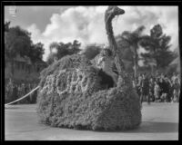 Large floral swan leading the Adohr Creamery Company float in the Tournament of Roses Parade, Pasadena, 1932